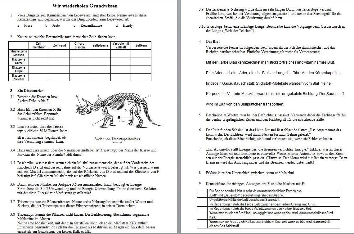 6. Klasse Skript 2: spezielle Didaktik | www.bio-nickl.de